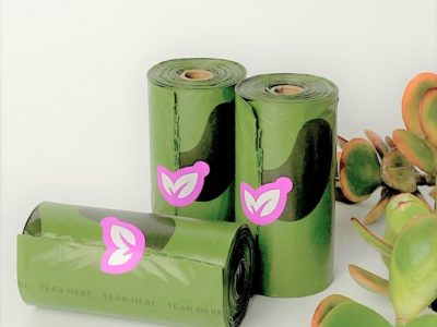 green bags in rolls with succulent