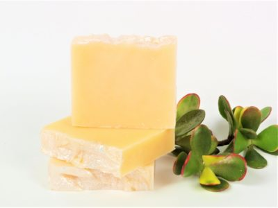 three kumquat soaps in a stack next to plant on white background